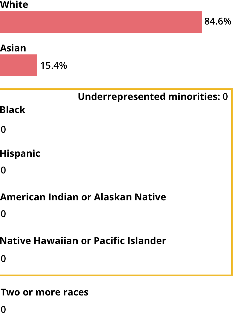 White: 84.6%. Asian: 15.4%. Black: 0. Hispanic: 0. American Indian or Alaskan Native: 0. Native Hawaiian or Pacific Islander: 0. Two or more races: 0.