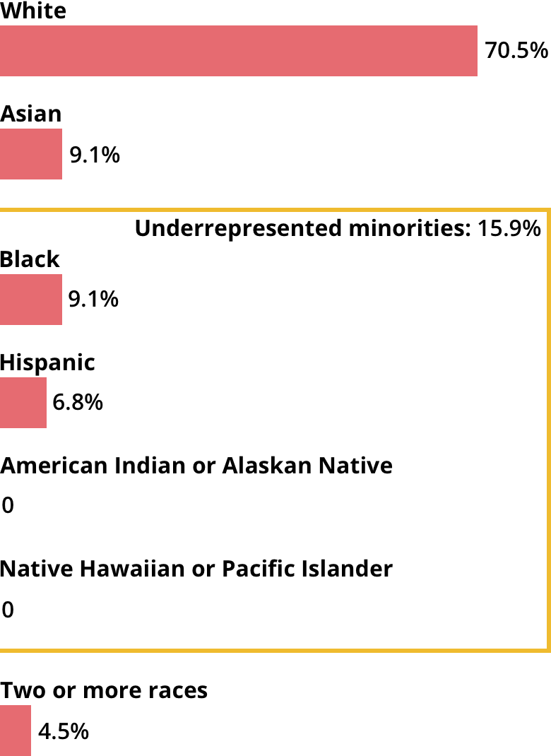 White: 70.5%. Asian: 9.1%. Black: 9.1%. Hispanic: 6.8%. American Indian or Alaskan Native: 0. Native Hawaiian or Pacific Islander: 0. Two or more races: 4.5%.