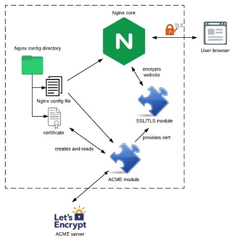 An architecture diagram showing the different resources available to Nginx, and their relationships with the ACME module developed, as well as the ACME server: Let's Encrypt.
